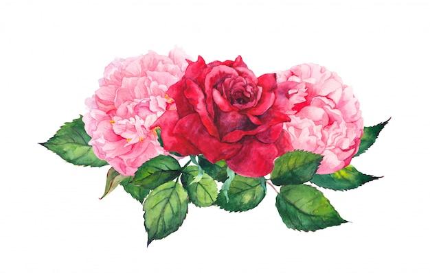 ピンクの牡丹の花と赤いバラ。水彩 Premium写真