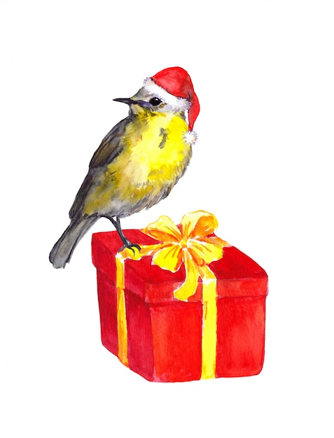 Милая птица - красная шляпа санта. коробка подарка на рождество Premium Фотографии