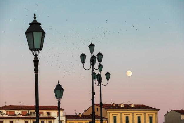 満月、建物の屋根、ランタン、ピサの日没時のクロウタドリの群れ。 Premium写真