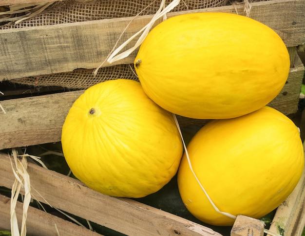 Спелые желтые органические дыни в деревянной коробке на рынке Premium Фотографии