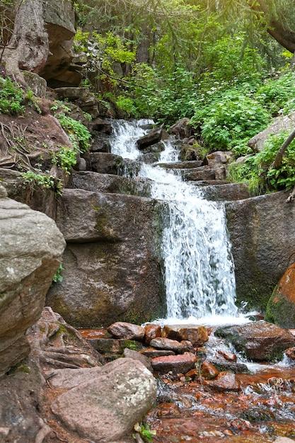 森の中の小さな絵のような滝。 Premium写真