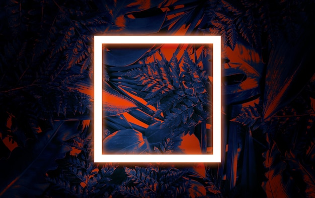 蛍光夏背景、抽象的な夏空白フレームカード Premium写真