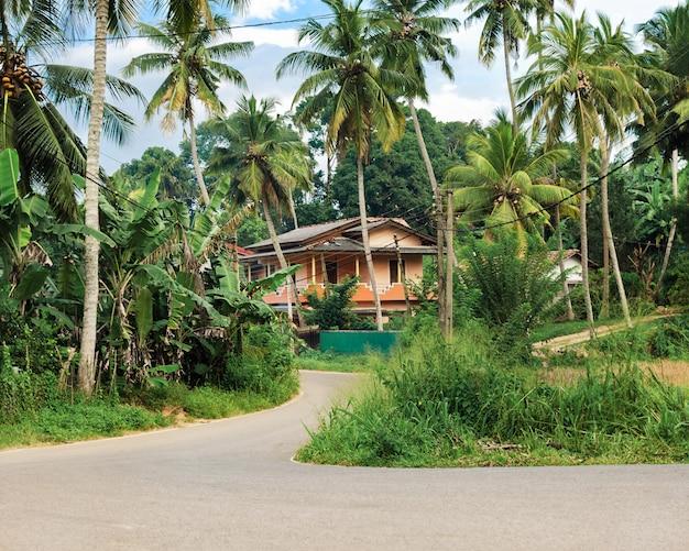 熱帯の島の静かな場所-ヤシの木と緑の植物に囲まれた大きな家に通じる道で、プライバシーと静けさをコンセプトに。 Premium写真