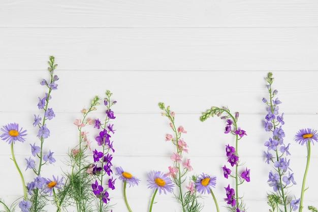 Дельфиниум цветы на белой доске Premium Фотографии
