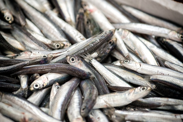 Куча рыбы в крупным планом Premium Фотографии