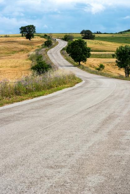 低い丘に続く曲がりくねった田舎道 Premium写真