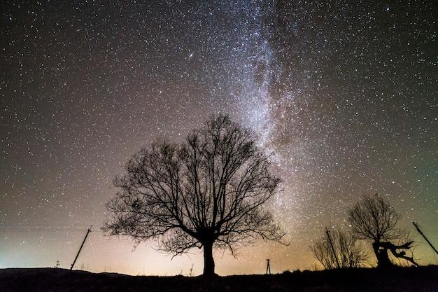 夜の田園風景。 Premium写真
