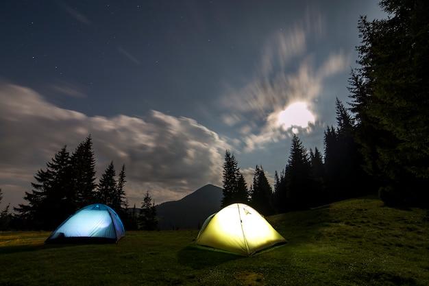 Две туристические палатки на зеленой лесной поляне среди высоких сосен. Premium Фотографии