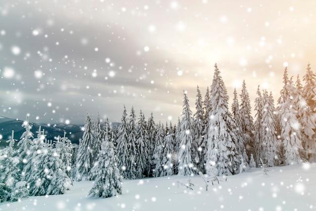 Красивый зимний горный пейзаж Premium Фотографии
