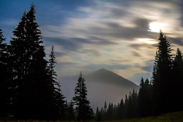 Захватывающий вид на великолепные туманные карпаты Premium Фотографии
