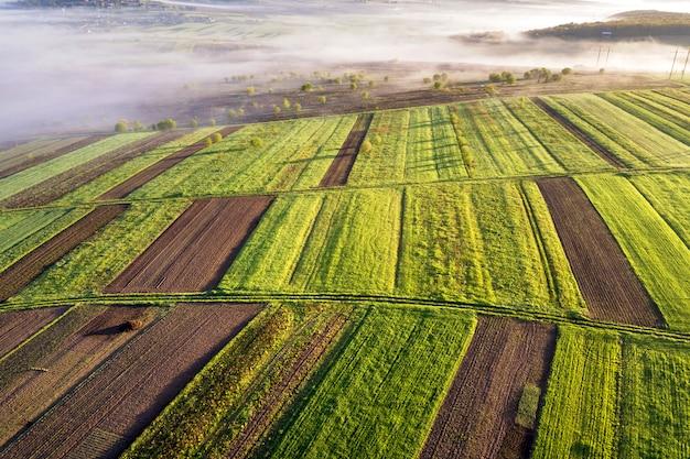 Аграрный ландшафт от воздуха на солнечном весне рассвете. зеленые и коричневые поля, утренний туман. Premium Фотографии