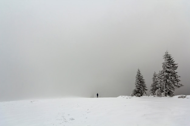 Вдали одинокая фигура человека, стоящего зимой на улице Premium Фотографии