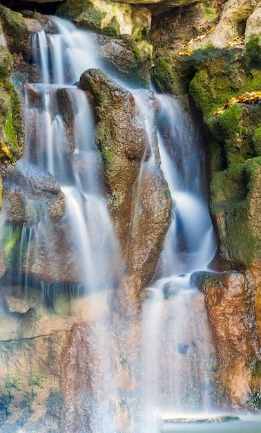 濡れた石の岩の上の緑の苔と公園の美しい滝の垂直写真 Premium写真
