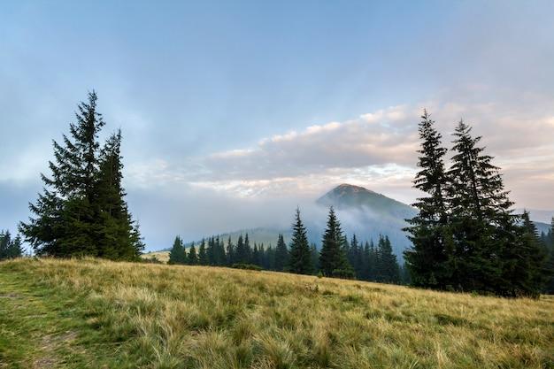 天気の良い日の山の風景。白い霧の雲で覆われた高山の緑の草が茂った谷からの眺め。自然、観光、旅行、環境保全の概念の美しさ。 Premium写真