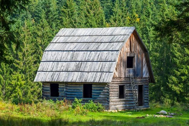 山の森の小さな木造住宅 Premium写真