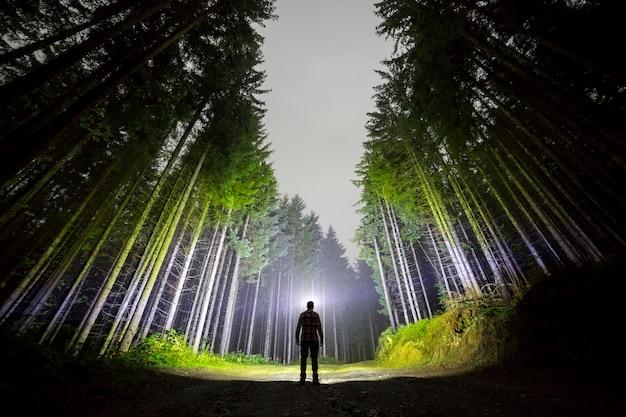 暗い青い夜空の下で背の高いモミの木の中で林道に立っている頭の懐中電灯を持つ男。 Premium写真