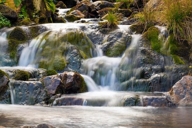美しい滑らかな水と公園内の小さな滝。シルキーな泡立つ水と山の森の小さな滝。 Premium写真