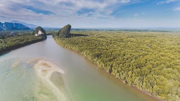 長い川とマングローブの森の空からの平面図。 Premium写真