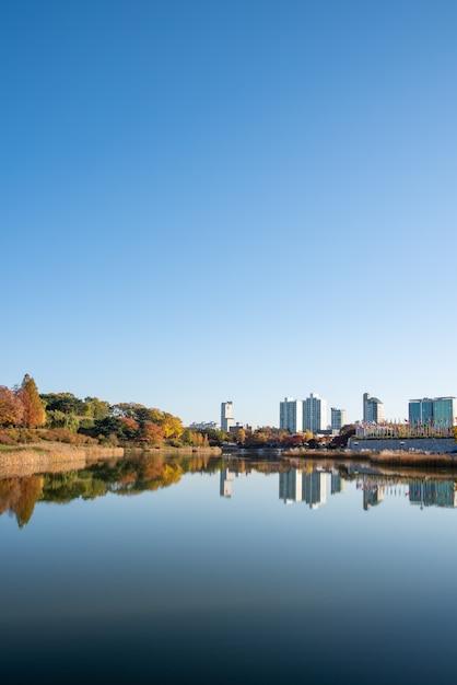落葉。秋の風景。湖。韓国のソウルオリンピック公園。 Premium写真