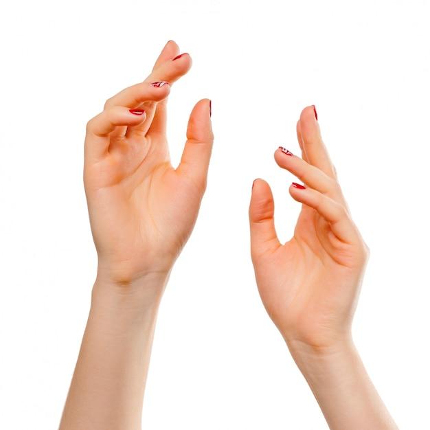 美しい女性の手のクローズアップ、手のひらを。孤立した Premium写真