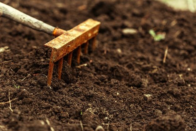 割り当てで掘りのショット。クローズアップ、ガーデニングの概念 Premium写真
