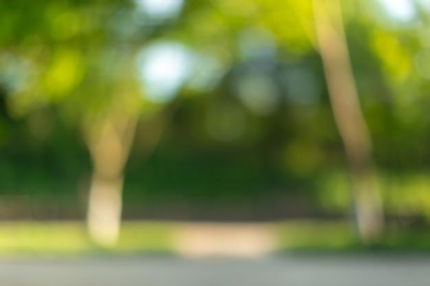 晴れた日の背景に公園のぼやけた木々や植物 Premium写真