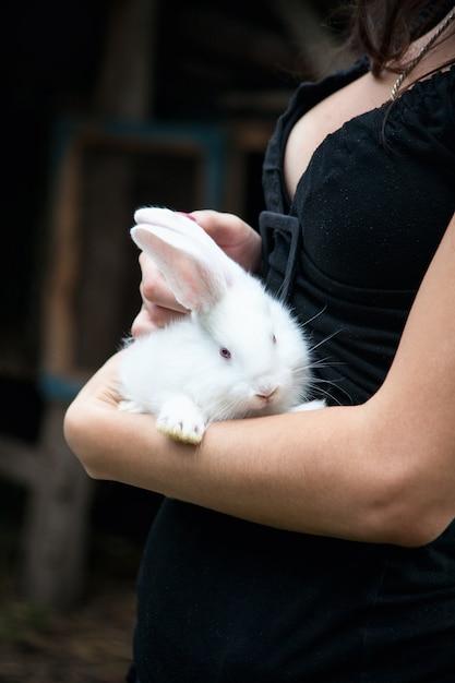 Кролик в руках девушки Premium Фотографии