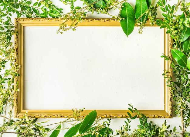 緑の木の枝と空のフレームを持つ植物 Premium写真