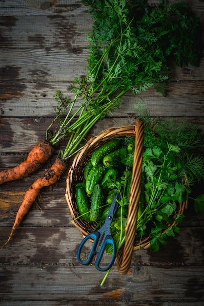 Урожай огурцов в корзине, свежесобранная морковь в почве на деревянном фоне на открытом воздухе Premium Фотографии