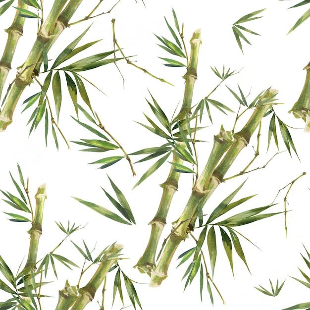 Акварельные иллюстрации листьев бамбука, бесшовный узор на белом фоне Premium Фотографии