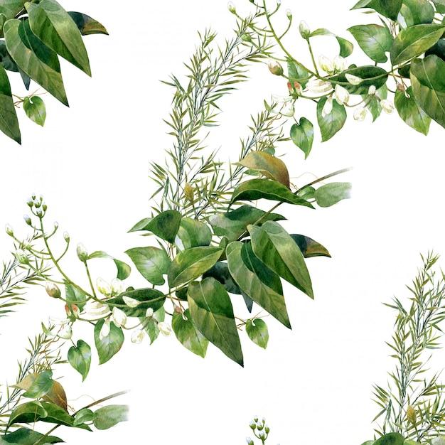 葉、シームレスなパターンの水彩イラスト Premium写真