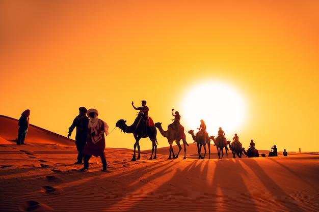 サハラ砂漠の夕暮れ時のラクダのキャラバン。 Premium写真