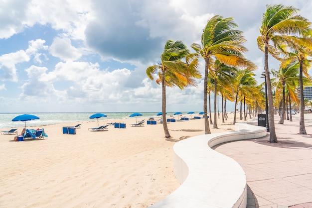 ヤシの木とフォートローダーデールビーチの遊歩道 Premium写真