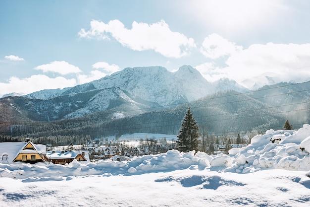 Вид на красивый горный пейзаж в татрах, закопане, польша Premium Фотографии