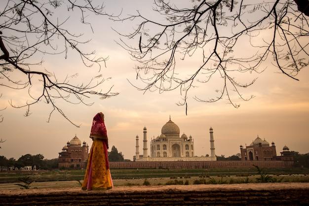 タージ・マハルの景色タージ・マハルの記念碑の朝の景色。インドのアグラにあるユネスコの世界遺産。 Premium写真