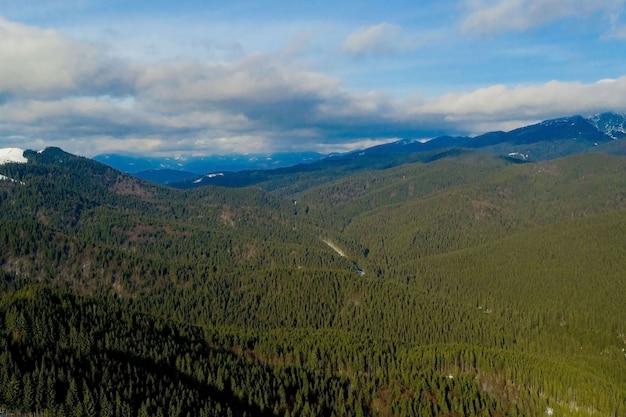山の美しい春。場所カルパチア、ウクライナ、ヨーロッパ。美の世界 Premium写真