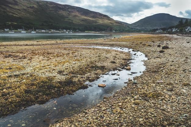 砂利浜の浅いクローズアップ。スコットランド。 Premium写真