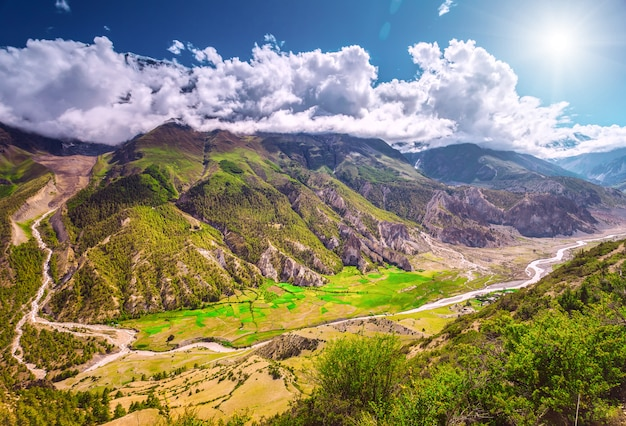カルパティア山脈の眺め。自然の概念 Premium写真