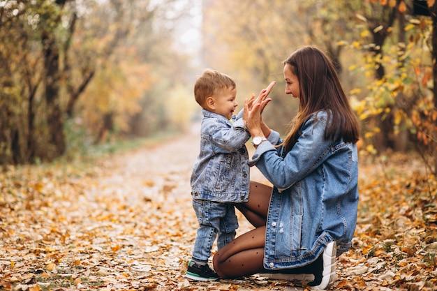 秋の公園で彼女の小さな息子と母 無料写真