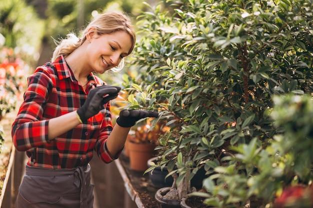 Женщина-садовник в теплице Бесплатные Фотографии