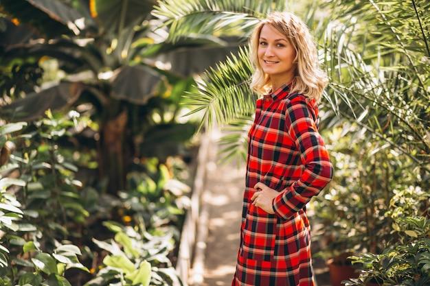 温室の女性ガードナー 無料写真
