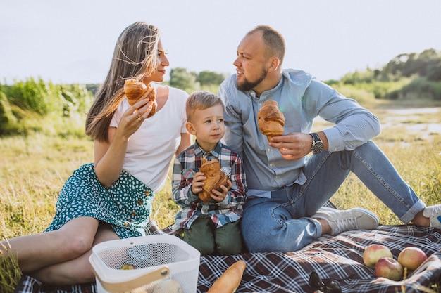 公園でピクニックを持つ幼い息子と若い家族 無料写真