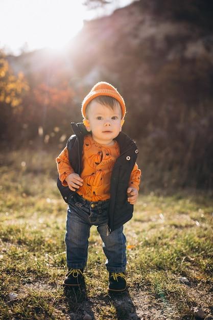 秋の公園で小さなかわいい男の子 無料写真