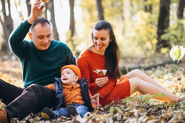 秋の公園で幼い息子と家族 無料写真