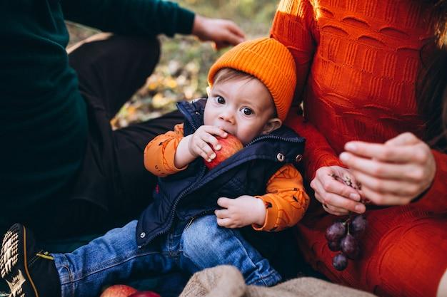 Семья с маленьким сыном на пикнике в парке Бесплатные Фотографии