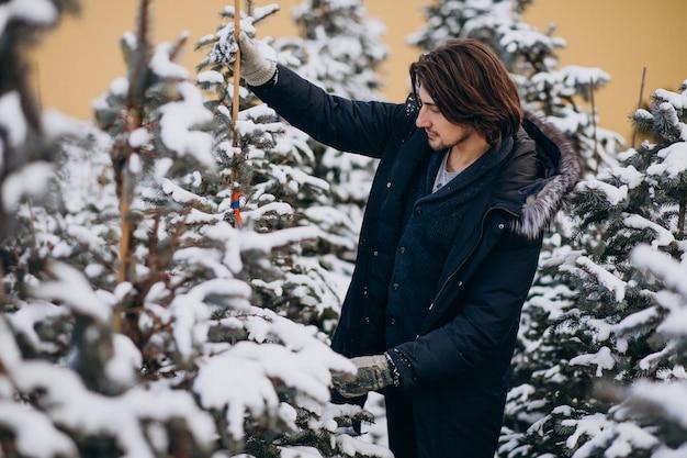 クリスマスツリーを選択するハンサムな男 無料写真