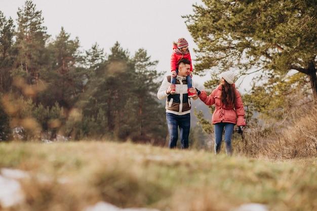 Молодая семья вместе, прогулки в лесу в зимнее время Бесплатные Фотографии