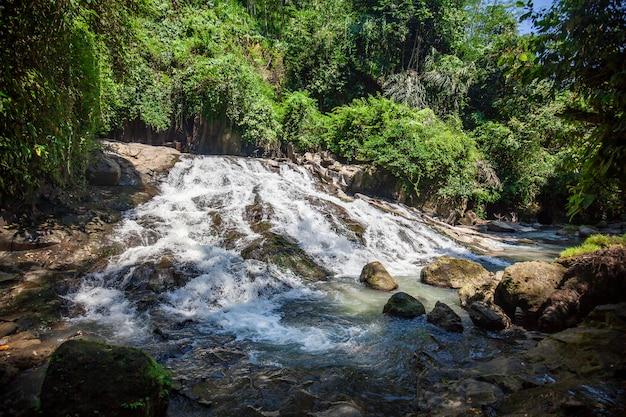 バリ島の小さな滝と緑の木々 Premium写真