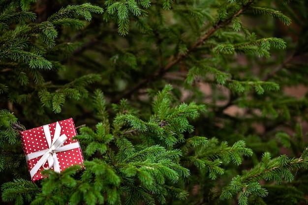 緑のモミの木の枝に弓でクリスマスの赤いギフトボックス Premium写真