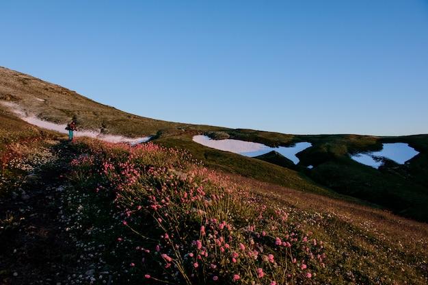 雪の残骸と山の背景にピンクの花の前景の丘フィールドに立っている人 Premium写真